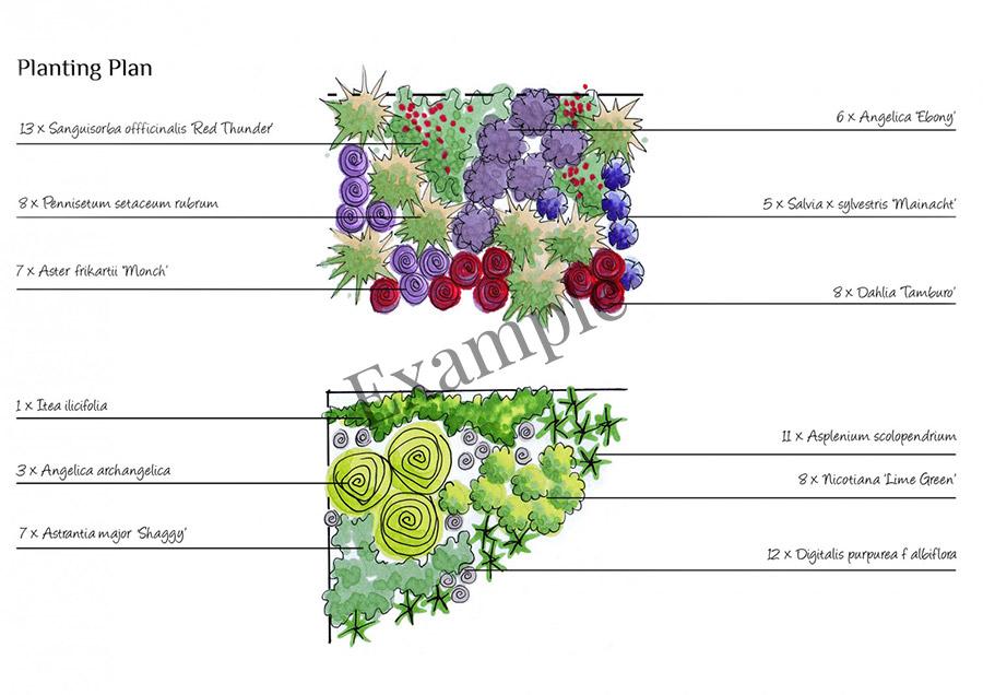 example-planting-plan